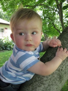 Climbing the tree at Grandma's!