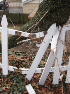 Fence damage