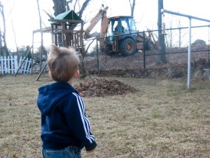 Watching the branch removal process...