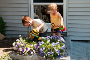 Watering flowers with Violet
