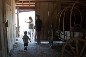 Exploring the barn